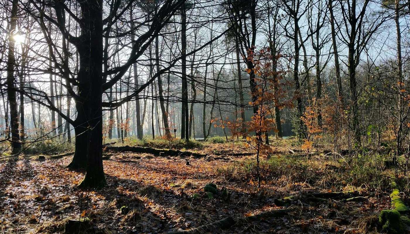 Urlaub in der Natur in Winterswijk.