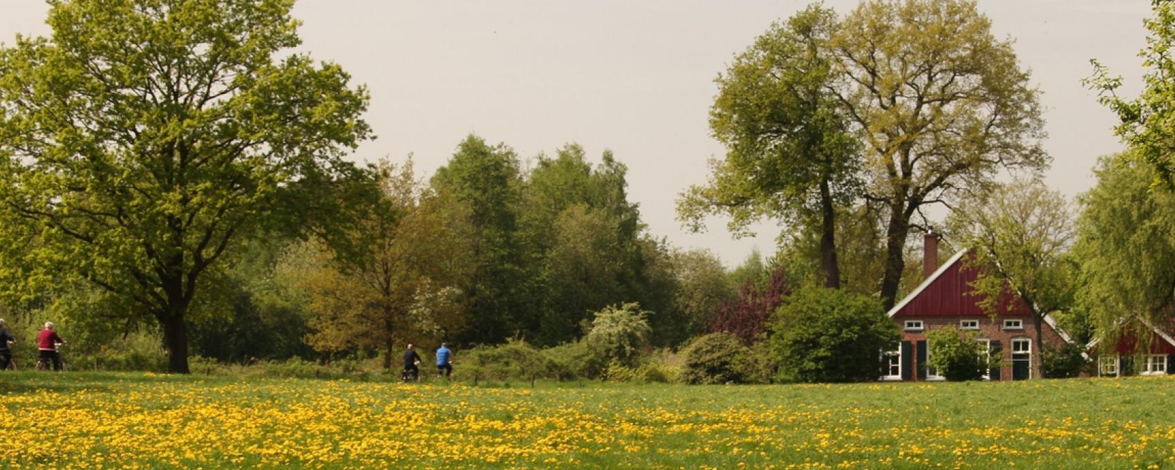 Natur Winterswijk