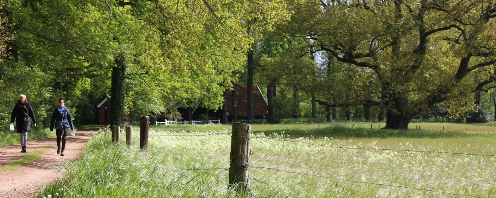 Wandern Winterswijk