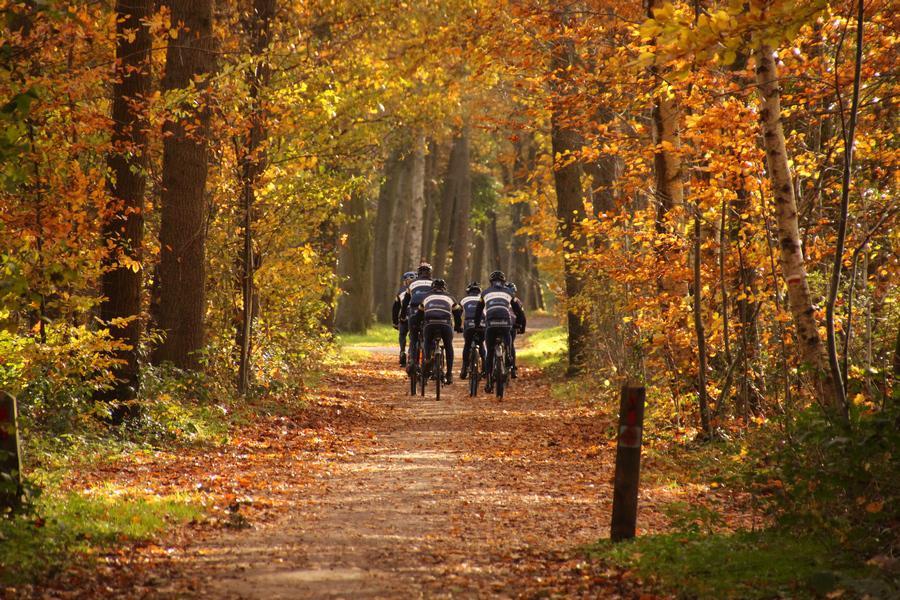 Herbst Winterswijk